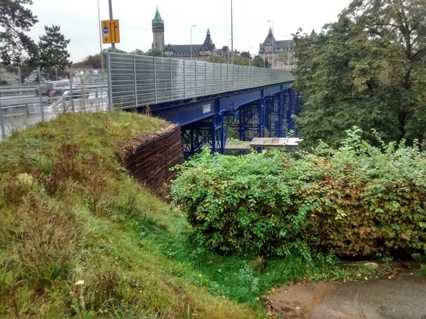 ponte prov1